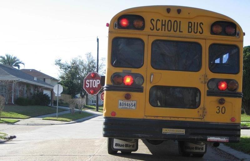 Tysiąc dolarów mandatu za przejechanie obok stojącego, szkolnego autobusu