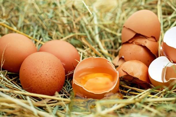 Inspekcja Handlowa przeprowadziła kontrolę jaj sprzedawanych w sklepach. Wyniki? Kiepskie
