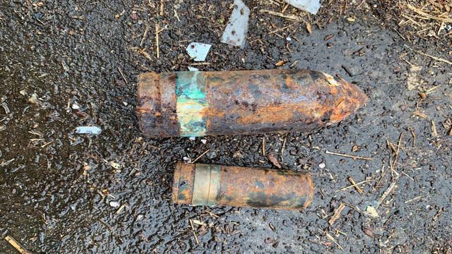 29 ładunków wybuchowych na terenie posiadłości w Michigan