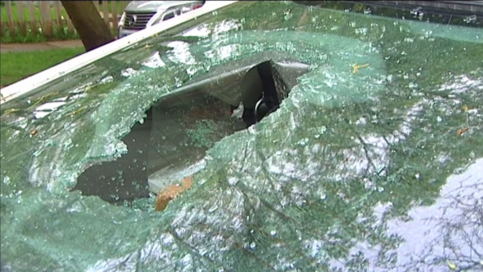 Ktoś uszkodził samochody w Rogers Park