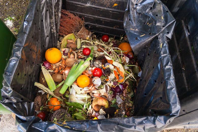 Jedna trzecia żywności produkowanej do spożycia jest albo tracona, albo marnotrawiona
