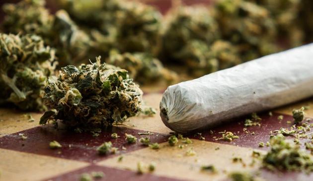 Naperville chce zakazać sprzedaży marihuany rekreacyjnej
