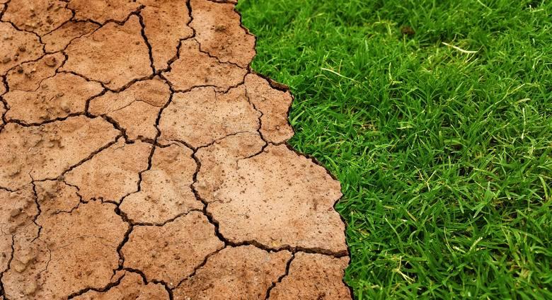 """John Holdren, były doradca Baracka Obamy: """"Straciliśmy 30 lat w kwestii zmian klimatu"""""""