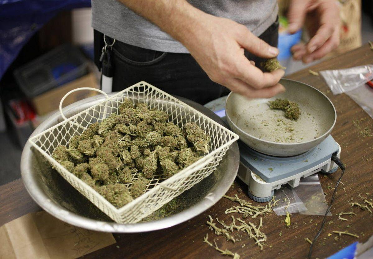 Zatwierdzono placówki do szkolenia pracowników zajmujących się sprzedażą marihuany rekreacyjnej