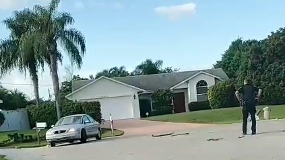Floryda: Pies przez godzinę jeździł samochodem