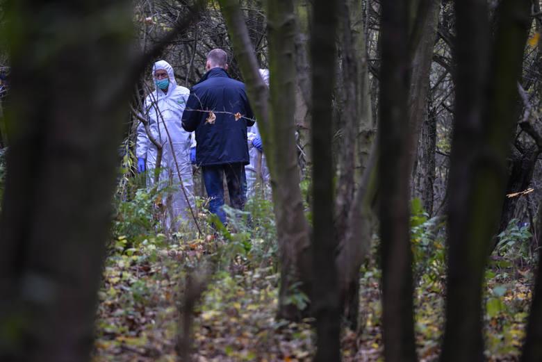 Zabójstwo dziecka w Zgierzu. Urodziła dziewczynkę w łazience i zakopała ją w lesie